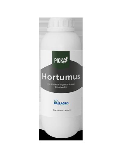 pickup_hortumus
